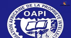 Organisation Africaine de la Propriété Intellectuelle