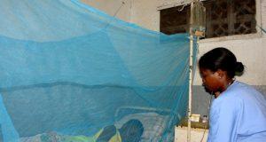 La moustiquaire protège contre les moustiques