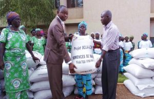 Distribution de semence de soja